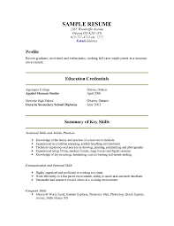 sample resumes for computer skills resume computer skills examples proficiency internet explorer