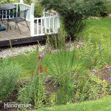 6 common lawn problems and how to fix them family handyman