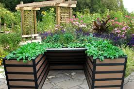 planter boxes sydney wooden outdoor planters box sydney