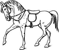 horse drawings to color