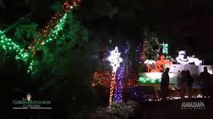 holiday and christmas lights at the florida botanical gardens