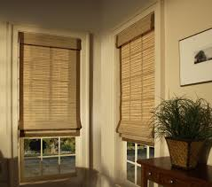 Types Of Window Coverings Home Decor Blinds Amusing Brown Shutters Window Curtains And Window