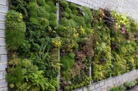 25 more cool vertical garden inspirations digsdigs vertical