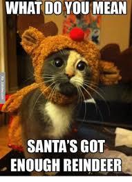 What S Meme Mean - what do you mean santa s got enough reindeer meme on me me