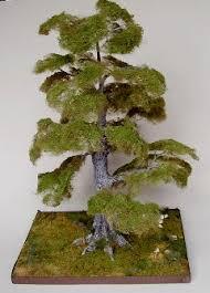 ceynix miniature trees