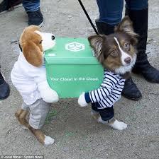 Carrying Halloween Costume Dogs Dress Halloween