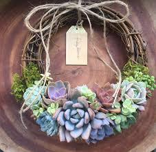 best 25 succulent wreath ideas on suculent plants