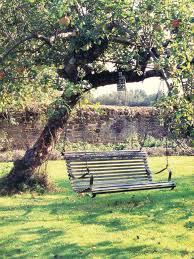 apple tree w bench swing josephine ryan spaces outdoor
