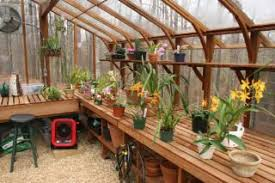 inside greenhouse ideas pictures to pin on pinterest pinsdaddy