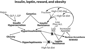 death by fructose the toxin to avoid and reasons why