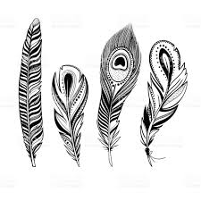 set of ornamental feathers stock vector 590061386 istock