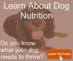 primal dog food review raw dog food analysis