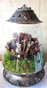 128 best terrariums etc images on pinterest terrarium ideas