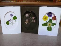 pressed flower greeting cards garden magic creative inspiration