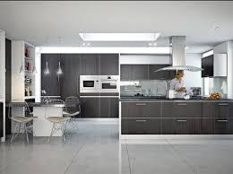 Buy New Kitchen Cabinet Doors Kitchen Excellent Reface Kitchens On Kitchen Dayoris Doors Modern