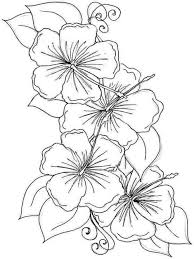 hibiscus flower coloring pages download and print hibiscus flower