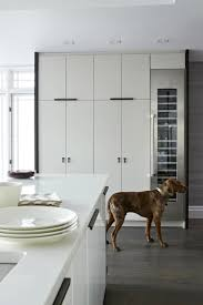 Floor To Ceiling Storage Cabinets With Doors Floor To Ceiling Kitchen Cabinets Kitchen Contemporary Croma
