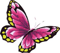 pink butterfly in watercolor with yellow dots tattoosk