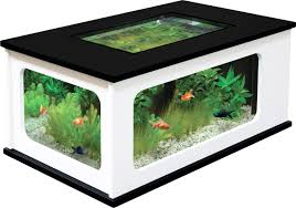 Table Basse Chinoise by Fabriquer Son Aquarium Table Basse U2013 Phaichi Com