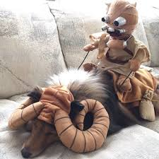 Star Wars Dog Halloween Costumes Pets Star Wars Costumes Starwars
