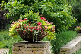 Shrubs For Patio Pots What Is The Best Material For Plant Containers And Planters Gp
