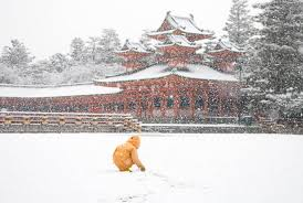 does it snow in kyoto