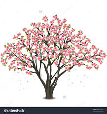 blossoms clipart black background
