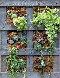 How To Make A Succulent Wall Garden by Diy Vertical Garden Pallet Home Design Ideas