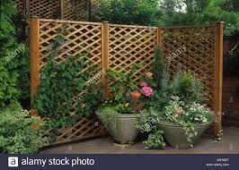 lovely garden trellis fence part 12 back to about trellis