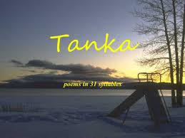 tanka poetry explained by barbarathompson teaching resources tes