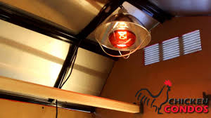 infrared heat lamp from chicken condos youtube
