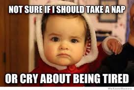 Funny Newborn Memes - here comes the first trimester memes page 12 babycenter