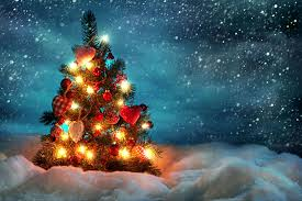 507 christmas tree hd wallpapers backgrounds wallpaper abyss