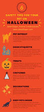 halloween safety tips halloween safety tips for your pets janet roper