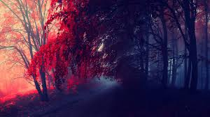 high quality images red autumn in cool collection b scb wallpapers