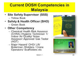 Sho Green mod1 11 safety health officer certificate program preview ppt
