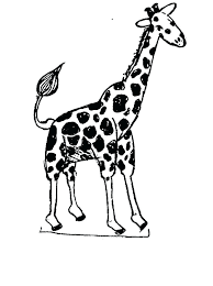 articles giraffe coloring pages adults tag giraffe