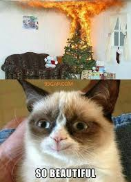 Funny Xmas Memes - funny meme about christmas tree ft grumpy cat 99gap com