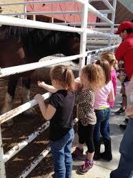 kindergarten field trip to thanksgiving pointe 3 jpeg east