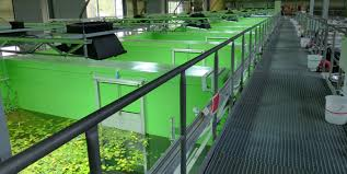 indoor ponds technology umweltbundesamt