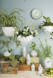 Wall Planters Indoor by 144 Best Hanging Wall Planters Images On Pinterest Gardening