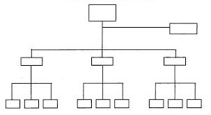 cara membuat struktur organisasi yang menarik contoh struktur organisasi umum carapedia