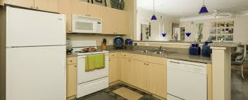 2 Bedroom Apartments In New Orleans Apartments In New Orleans The Saulet