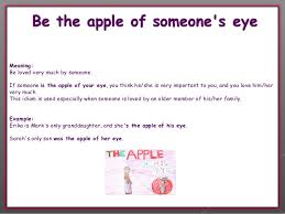 be the apple of someone s eye
