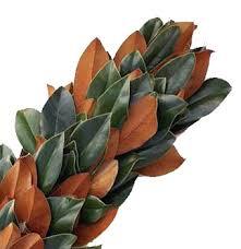 magnolia garland bulk fresh magnolia leaves at wholesale prices