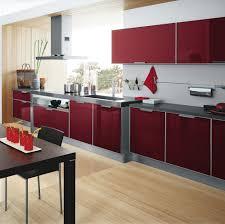 Kitchen Cabinets Ideas Kitchen Cabinet Gloss Finish Inspiring - High kitchen cabinet