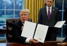 Trump Redesign Oval Office Feeling Good So Far Alaska Dispatch News
