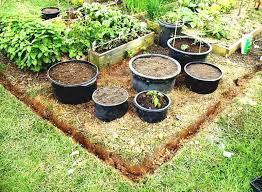 garden layout planner free home vegetable garden design cofisem co