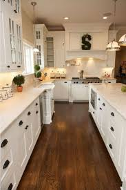 Contemporary Kitchen Cabinets by Kitchen Furniture Contemporary Kitchen Cabinets Popular Awesome