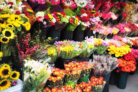 wholesale flowers best and the cost effective way to